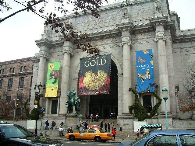Que hacer en Nueva York -Natural history museo
