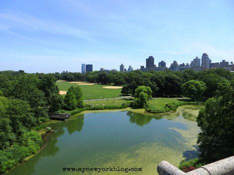Turtle Pond Central Park