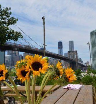 Primavera en Nueva York